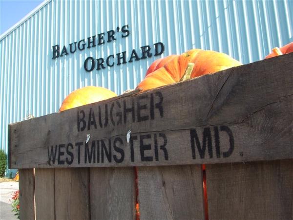 Establishing Baugher's 3